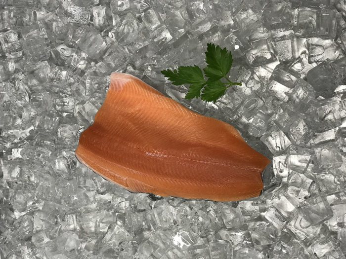 Fresh salmon with skin on